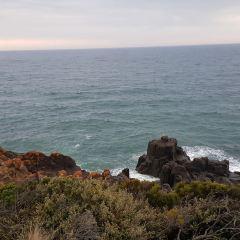 澳洲低頭角燈塔用戶圖片