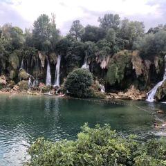 Moster Amfi User Photo
