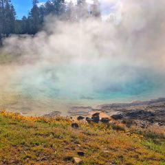 顏料鍋噴泉用戶圖片