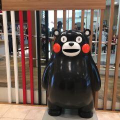 熊本熊部長辦公室用戶圖片