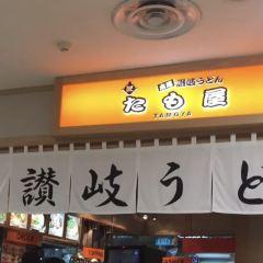 Tamoya User Photo
