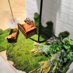 Dollhouse Museum User Photo