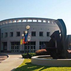 奧蘭多藝術博物館用戶圖片