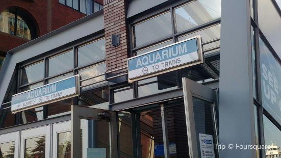 Aquarium Station