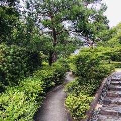 Nakamura Park User Photo