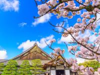 Coronavirus Travel Restrictions in Japan and Attractions Closure (Updated 2020 March)