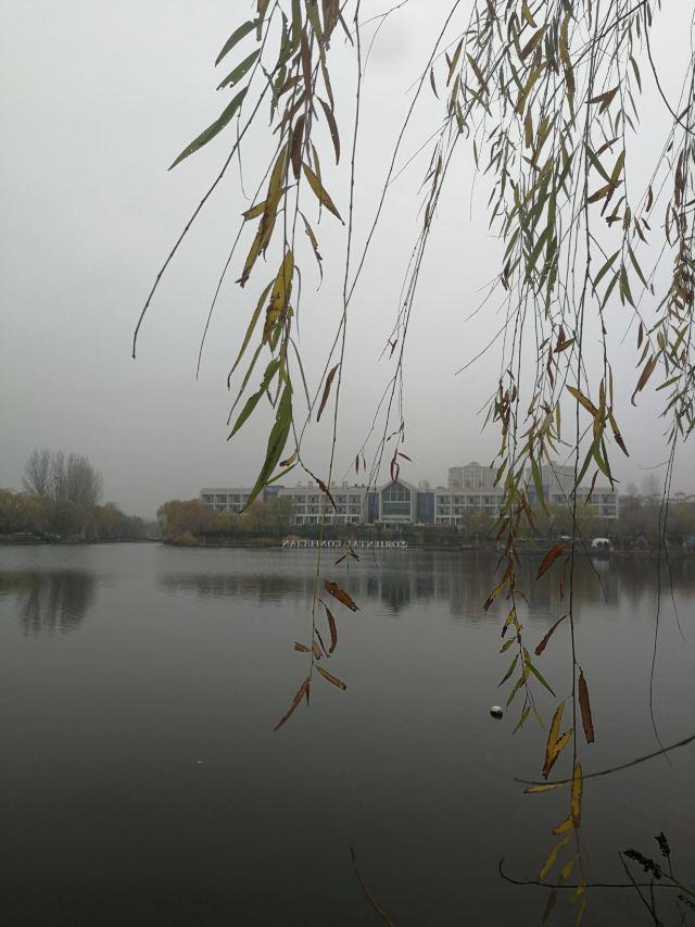 Wangziqianhong Health Preservation Resort