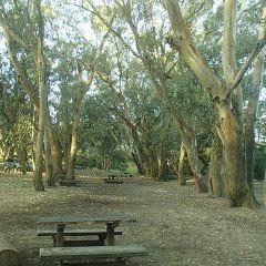 Parque Municipal Vivero Cosme Argerich User Photo