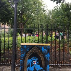 Merrion Square User Photo