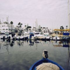 Sousse User Photo