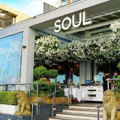 Soul Bar and Bistro User Photo