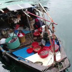 香港仔大道/鴨脷洲大橋休憩處用戶圖片