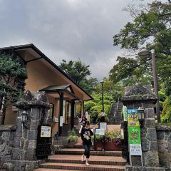 箱根強羅公園張用戶圖片