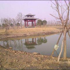 龍淵湖公園用戶圖片