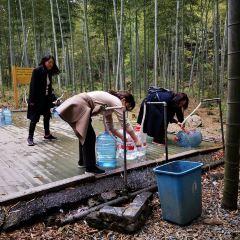 룽우전 시산 삼림공원 여행 사진