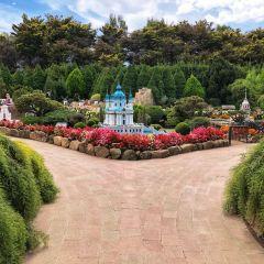 科金頓綠色花園用戶圖片