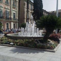 Plaza de las Flores User Photo