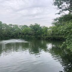 福田濕地公園用戶圖片