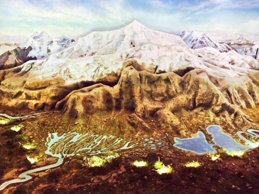 Qinghai-Tibetan Plateau Nature Museum