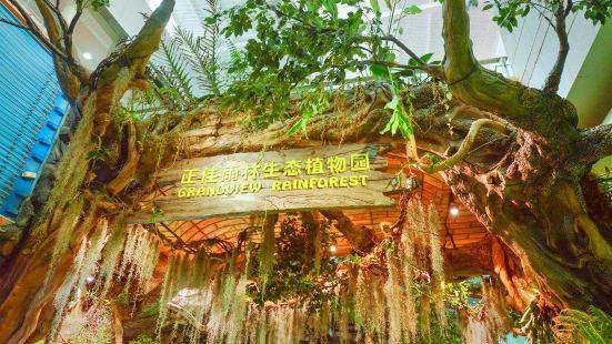 正佳雨林生態植物園