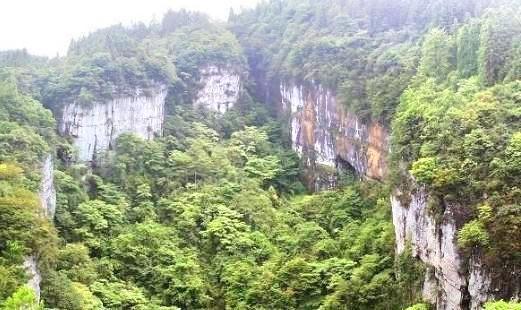 茂雲山國家森林公園