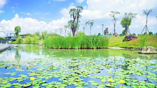 碧湖生態公園
