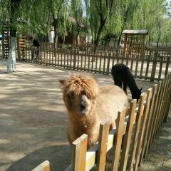 臨汾市動物園用戶圖片
