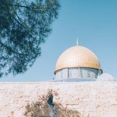 圓頂清真寺用戶圖片