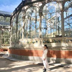馬德里水晶宮用戶圖片