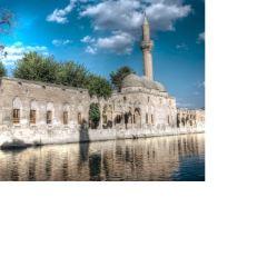 Halil-ür Rahman清真寺用戶圖片