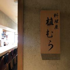 Uemura User Photo