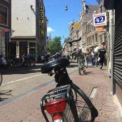 ハールレンメル通りのユーザー投稿写真