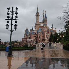 Disneytown User Photo