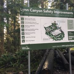 Lynn Canyon Park User Photo