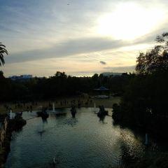 城堡公園用戶圖片
