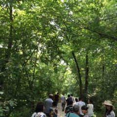 蘿北名山景區用戶圖片