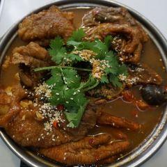 Tan Shi(napolunqijiandian) User Photo