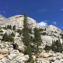 Olmsted Point User Photo