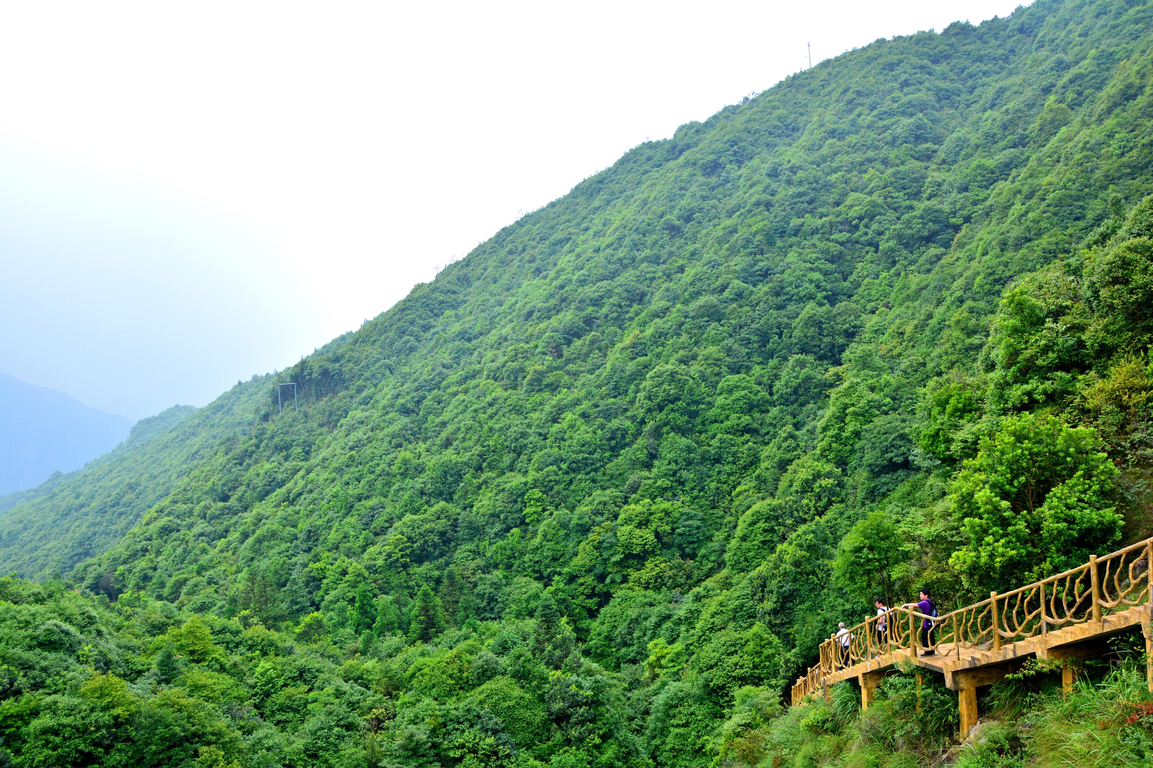 福州雲頂一日遊