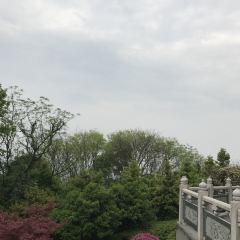 螺子山公園用戶圖片