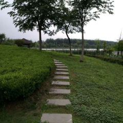 Chengxi Park User Photo