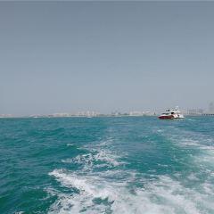 Dubai Yacht Tourism User Photo