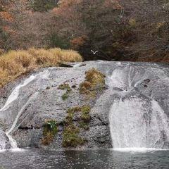 Miyazawa Kenji Fairy Tales Village User Photo