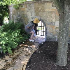 弗雷德里克·梅耶爾花園及雕塑公園用戶圖片