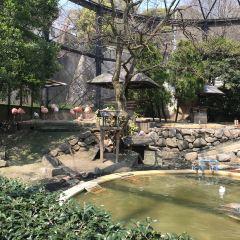 福岡市動物園用戶圖片