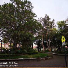 Universidad de Costa Rica User Photo