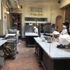 Cafe Bellaria User Photo