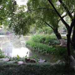 駱賓王公園用戶圖片