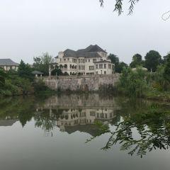 라벤더 장원 여행 사진
