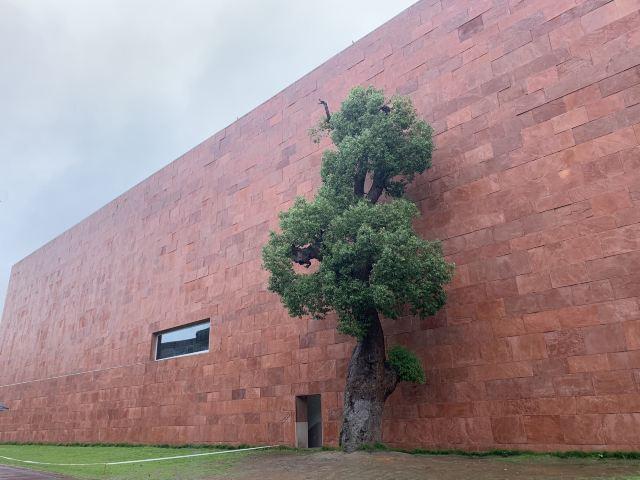 중국미술대학교 샹산캠퍼스